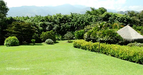 Mantenga sus prados siempre verdes finca y campo for Jardines del prado