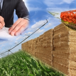 Costos de poscosecha de productos agropecuarios
