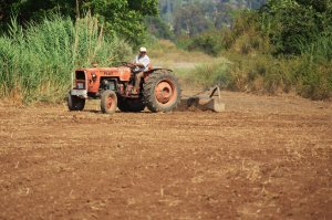farmer_on_tractor_191752