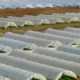 Los indicadores de las agroempresa
