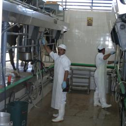 Adopción de tecnología en las agroempresas