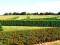Valor económico y ecológico de las cercas vivas en fincas ganaderas