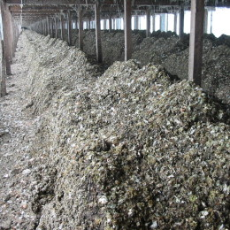 Producción de compost de gallinaza