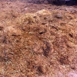 Producción de abono orgánico a partir de estiércoles de animales